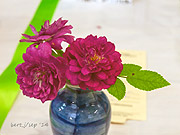 rose_show_18_small
