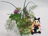 herbs_1_sm