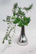 herbs_2_sm