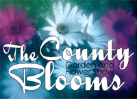 The County Blooms Show