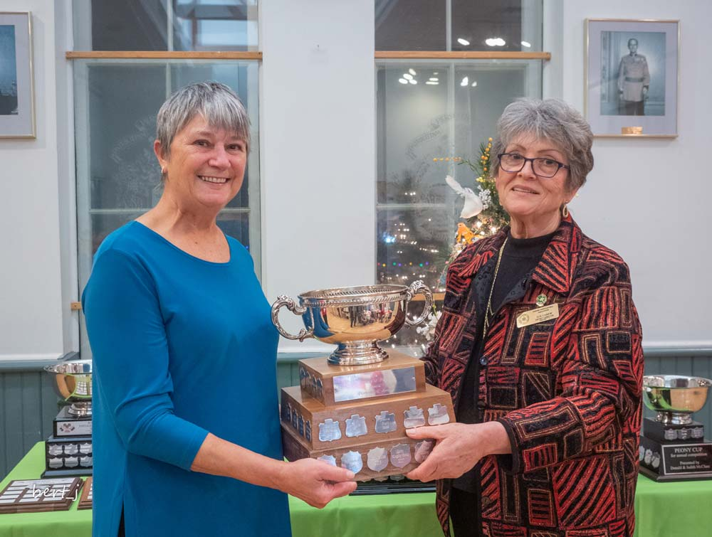 Pat Stuckey, most points in Minishows, Susan Carew