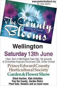 County Blooms Show